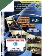 Modulo 01 Procesos Pedagogicos de Inicial y Primaria