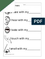 5 Senses Words