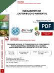 Indicadores Ambientales (Proyecto INSOAV) 2012 Miguel Peña