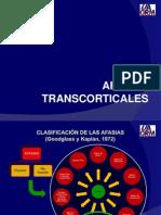 Afasias Transcorticales y Anomica