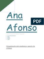 Ana Afonso Organizer