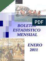 2011 01 Boletin Estadistica Enero