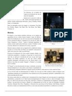 Singani.pdf 6