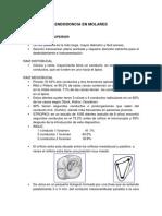 Endodoncia en Molares