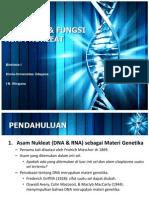 Struktur _ Fungsi Dna
