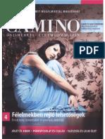 Camino Magazin 2012 03-04