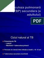 CURS 5 TB PULM SEC + RG