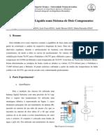 Relatorio SL Marta Acb David Morais.pdf