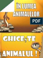 Animale Substantive si Adjective