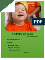 SD Definitivo