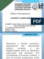 163376382-Placenta