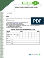 articles-19413_recurso_docx (1)