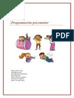 Programación Psicomotricidad Copia