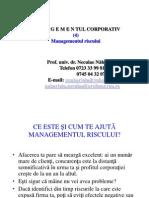 Prezentare 4 MMC Managementul Riscului