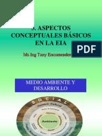 Tema 3_Aspectos Conceptuales en EIA