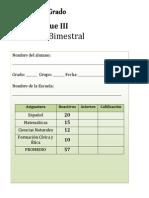 3er Grado - Bloque 3 (2013-2014) romana.docx