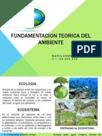 Fundamentacion Teorica Del Ambiente