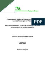 Programa Sociología Del Trabajo AAG