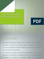 Hormigon Celular