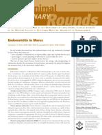 Endometris en Yeguas, 2003