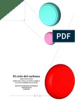 Investigacion El Ciclo Del Carbono