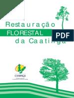 Restauracao Florestal Da Caatinga
