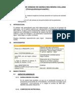 2determinacion de Cenizas en Quinua Collana Imprimir