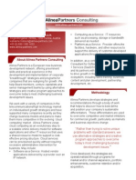 AlineaPartnersServices[1] N.pdf