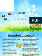 Nature Revision Meanings 121024230715 Phpapp01