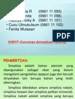 Kunyit (Curcumae Domesticate Rhizoma)
