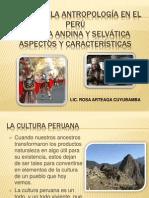 Cultura Andina