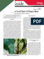 Cercospora Leaf Spot of Sugarbeet