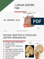 Riview Anfis--px Fisik Diagnostik Persarafan 2013