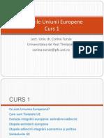 203230054 Politica Uniunii Europene