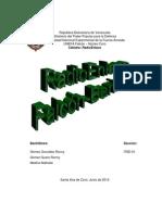 informe proyecto radioenlace