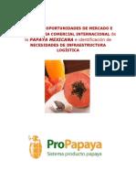 PAPAYA2009 (1)
