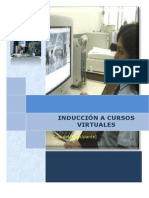 Induccion Manual