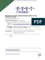 Mechanisms of Obesity-Associated Insulin Resistance