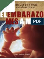 El Embarazo Mes a Mesv1.0