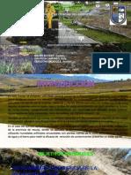 Biorremediación y Bioacumulación