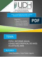 Aves Acuaticas Del Peru 2009