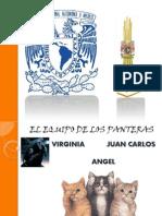 UTILIDAD_CONTABLE_Y_FISCAL,_VERSION_FINAL.pptx