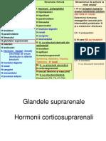 Hormoni 5 Corticoizi Sexuali Feminini 2014