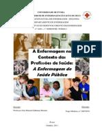 Enfermagem de Saúde Pública - A Enfermagem no Contexto das Profissoões de Saúde