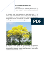 Araguaney Árbol Nacional de Venezuela