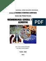 GUIA DE PRACTICAS MICROBIOLOGIA.docx