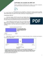 Manual Prático Do SECAF