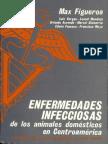 Enfermedades Infecciosas de Centroamerica1.pdf