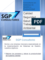 Servicios Sgp Consultores