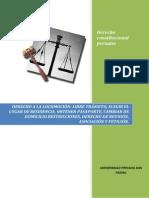constitucional peruano trabajo de primera unidad.docx